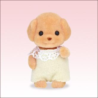 トイプードルの赤ちゃん - 2