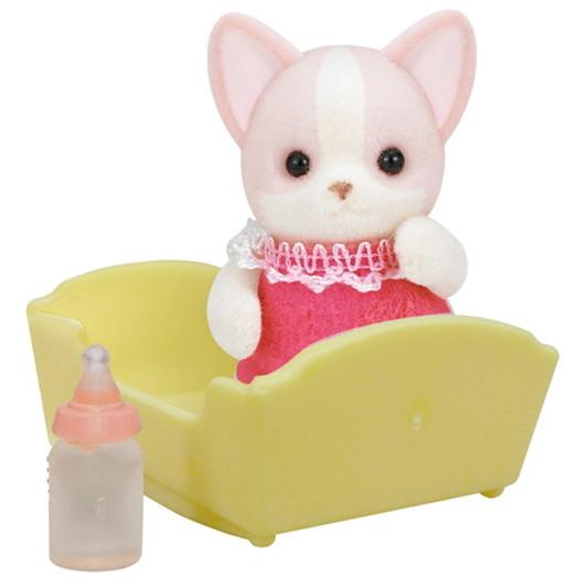 Chihuahua Baby - 4