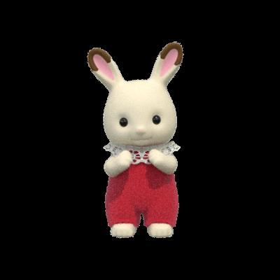 ショコラウサギの赤ちゃん クレムちゃん イメージ